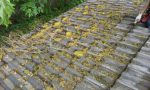 Silverdale Gutter Cleaning Service