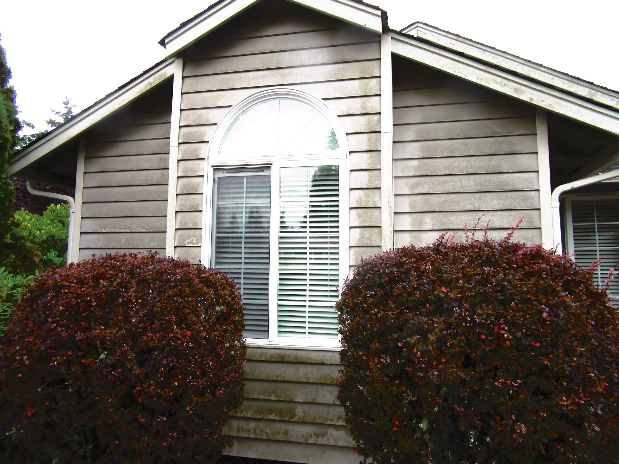 Silverdale Power Washing Clean Cut Services 360 271